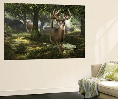 Big Buck Whitetail Deer