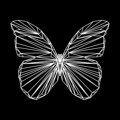 Butterfly Polygon