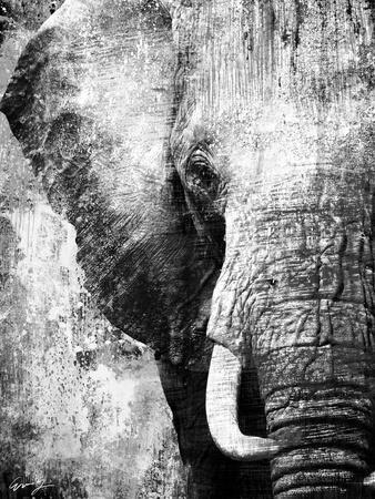 African Animals I - Grey