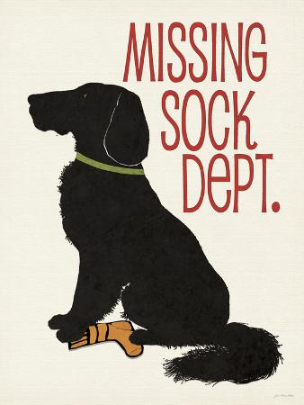 Missing Sock Dept