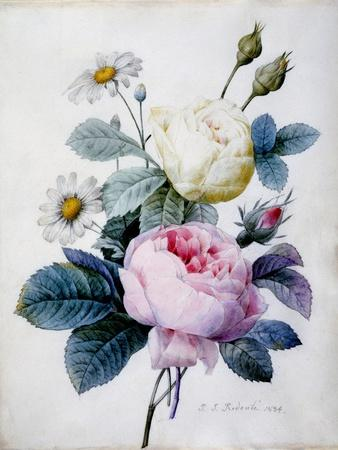Bouquet of Roses with Daisies, Published 1834