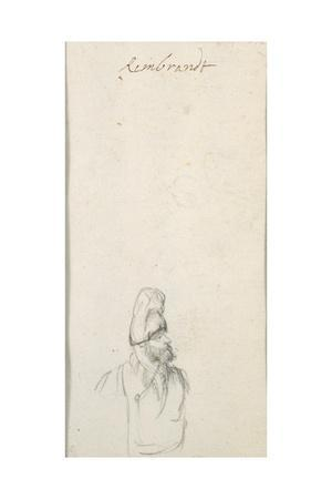 Bearded Man in Profile, in a High Cap, C.1640