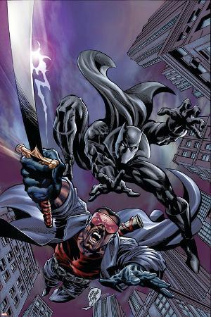 Black Panther No.12 Cover: Black Panther and Blade