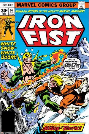 Iron Fist No.14 Cover: Iron Fist and Sabretooth