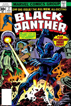 Black Panther No.2 Cover: Black Panther, Princess Zanda and Hatch-22 Charging