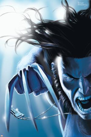 Wolverine No.11 Cover: Wolverine