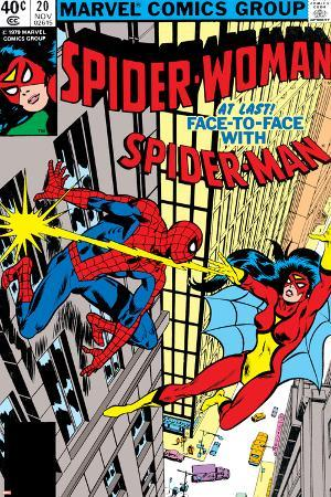 Spider-Woman No.20 Cover: Spider Woman and Spider-Man Fighting