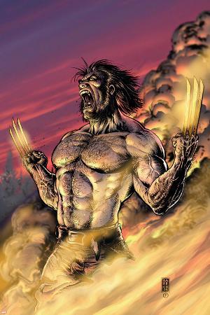 Wolverine No.17 Cover: Wolverine