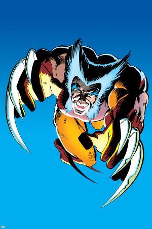 Wolverine No.2 Cover: Wolverine Fighting