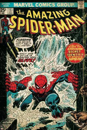 Marvel Comics Retro: The Amazing Spider-Man Comic Book Cover No.151, Flooding (aged)