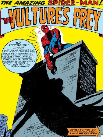 Marvel Comics Retro: The Amazing Spider-Man Comic Panel, the Vulture's Prey