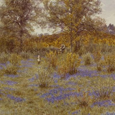 Bluebell Copse, 1889