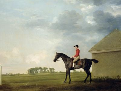 Gimcrack with John Pratt Up on Newmarket Heath, 1765