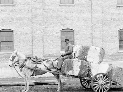 A Typical Cotton Cart, Mobile, Ala.