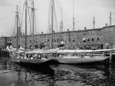Schooners at the T Wharf