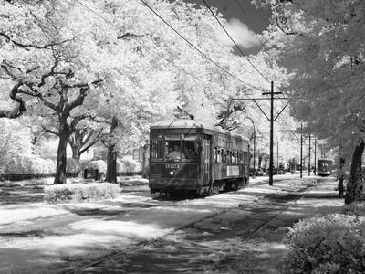 Streetcar, St. Charles Avenue, New Orleans