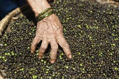 A Woman Mixes Her Peppercorns in the Market