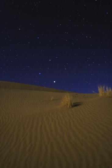 Night Sky Above Moonlit Desert Sand Dunes  Saturn, the Brightest, Appears  in the Constellation Leo