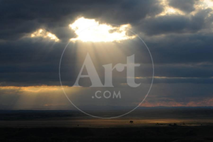 light up wall deor.htm landscapes with sun streaming through clouds lighting up lone tree  streaming through clouds