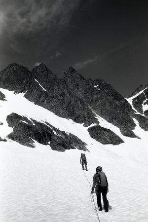 Climbers Ascending a Glacier on a Mountain Near Rogers Pass