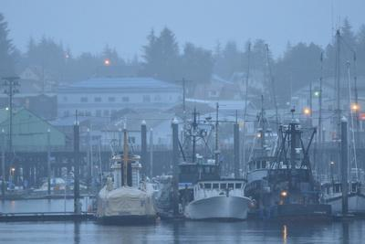Commercial Fishing Boats Anchored in the Harbor on a Rainy Day