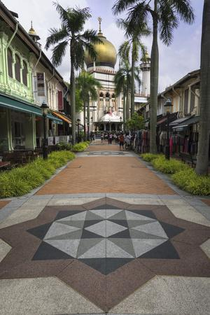 Road Leading to the Sultan Mosque in the Arab Quarter, Singapore, Southeast Asia, Asia