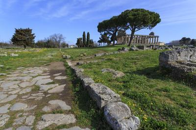 Temple of Athena (Temple of Ceres), Paestum, Greek Ruins, Campania, Italy