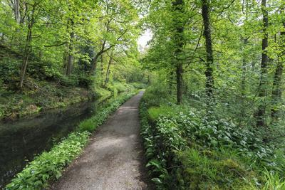 Historic Cromford Canal and Tow Path in Spring