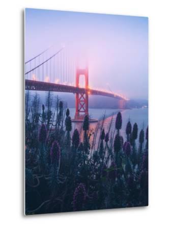 Foggy Golden Gate Bridge and Wildflowers, San Francisco