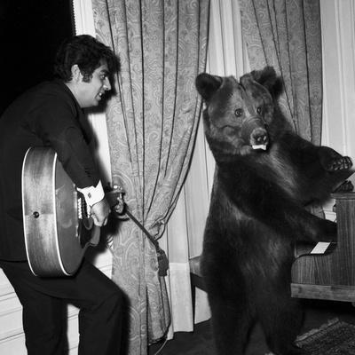 Singer Enrico Macias Playing the Guitar While a Bear Is Playing the Piano, 9 May 1967