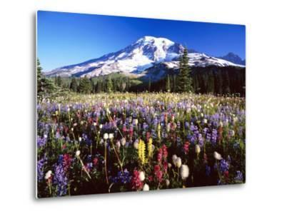 Wildflower Meadow and Mount Rainier