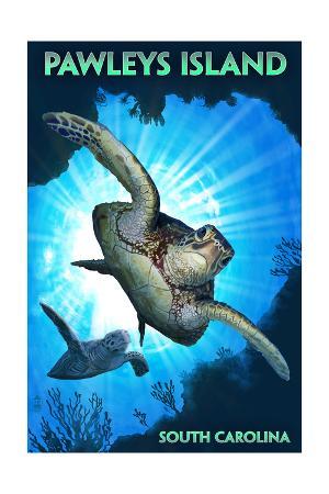 Pawleys Island, South Carolina - Sea Turtles Diving