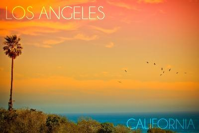Los Angeles, California - Sunset and Birds