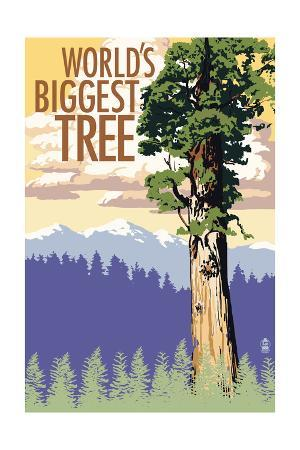 World's Biggest Tree - National Park WPA Sentiment