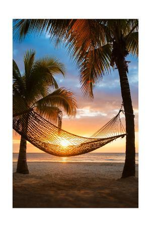 Hammock and Sunset