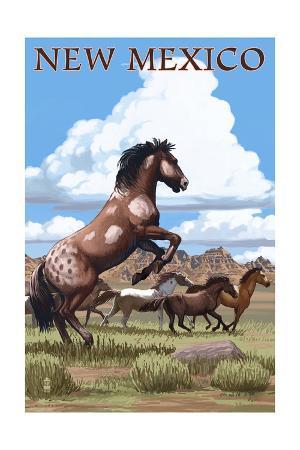 New Mexico - Wild Horses