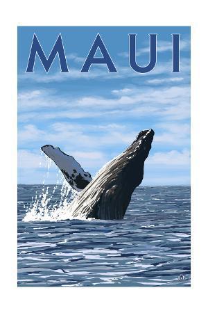 Maui, Hawaii - Humpback Whale