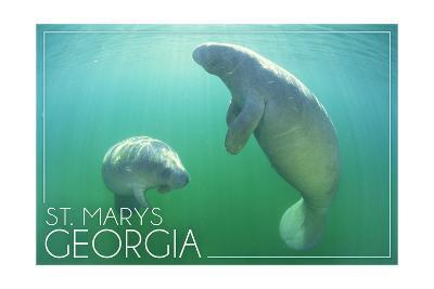 St. Marys, Georgia - Manatees Underwater