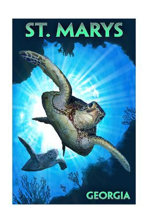 St. Marys, Georgia - Sea Turtle Diving