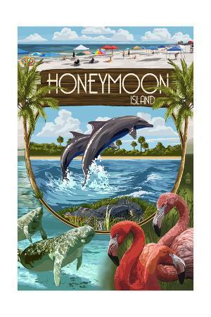 Honeymoon Island, Florida - Montage