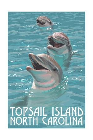 Topsail Island, North Carolina - Dolphins