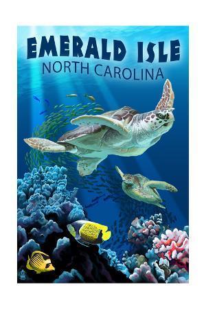 Emerald Isle, North Carolina - Sea Turtle Swimming
