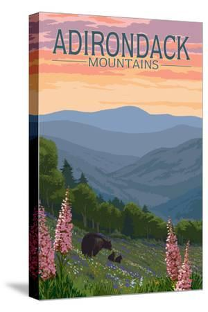Adirondack Mountains, New York - Bears and Spring Flowers