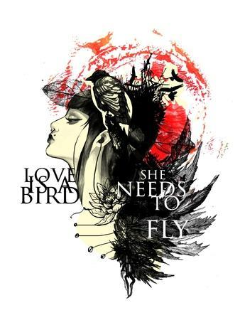 Love Needs to Fly