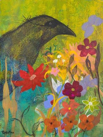 Masked Crow