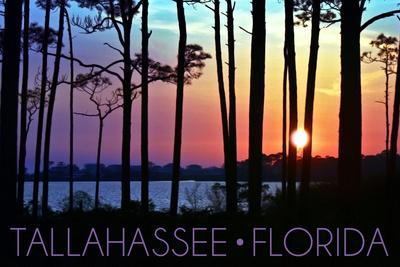 Tallahassee, Florida - Sunset and Silhouette