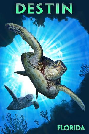 Destin, Florida - Sea Turtle Diving