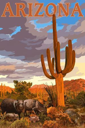 Arizona Javelina And Cactus Wall Mural By Lantern Press