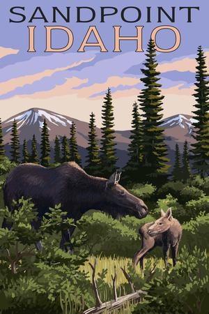 Sandpoint, Idaho - Moose and Baby Calf