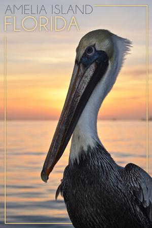 Amelia Island, Florida - Pelican
